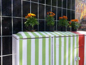Stromkasten mit Blumen